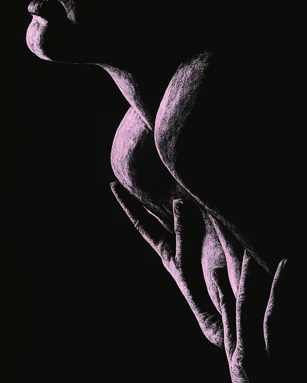 Nude Poster featuring the drawing Cherish by Richard Young