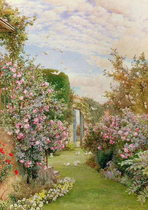 Garden Poster featuring the painting China Roses by Alfred Parsons