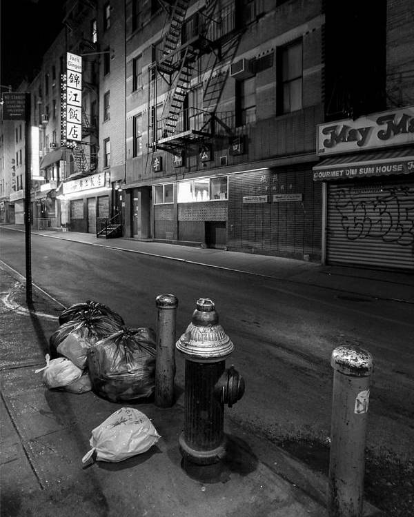 Chinatown Poster featuring the photograph Chinatown New York City - Joe's Ginger On Pell Street by Gary Heller