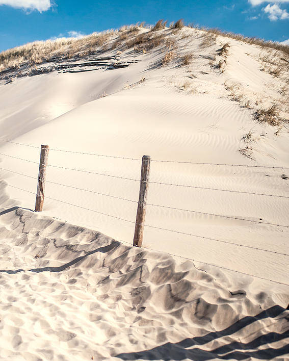 Nature Poster featuring the photograph Coastal Dunes In Holland by Jenny Rainbow