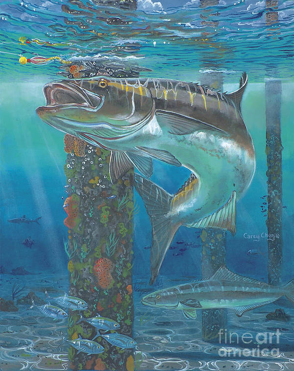 Cobia Poster featuring the painting Cobia Strike In0024 by Carey Chen