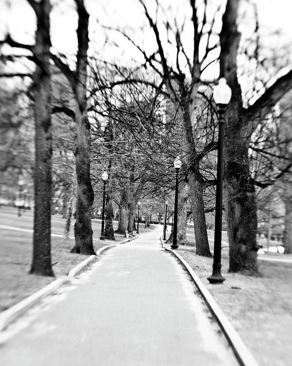 Black & White Poster featuring the photograph Commons Park Pathway by Scott Pellegrin