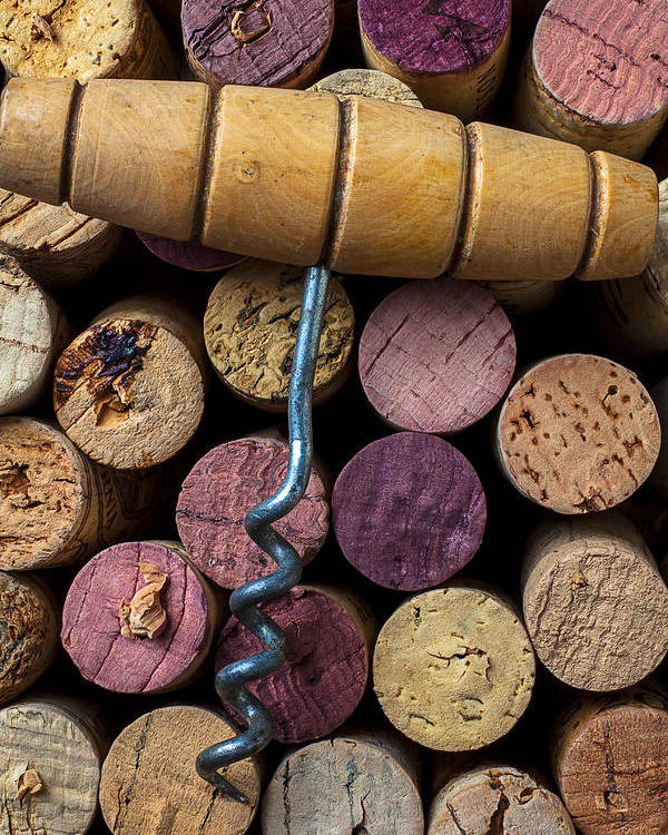 Corks Poster featuring the photograph Corkscrew On Top Of Wine Corks by Garry Gay
