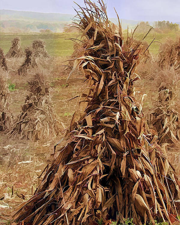 Landscape Poster featuring the photograph Corn Stalk Bales by Marcia Colelli