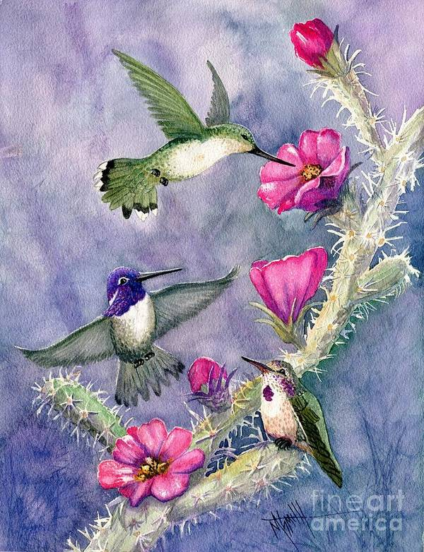 Hummingbirds Poster featuring the painting Costa Hummingbird Family by Marilyn Smith