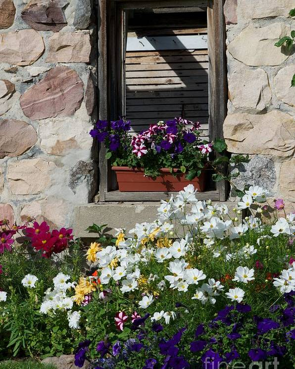 Flowers Poster featuring the photograph Country Cottage by Jessica Davis