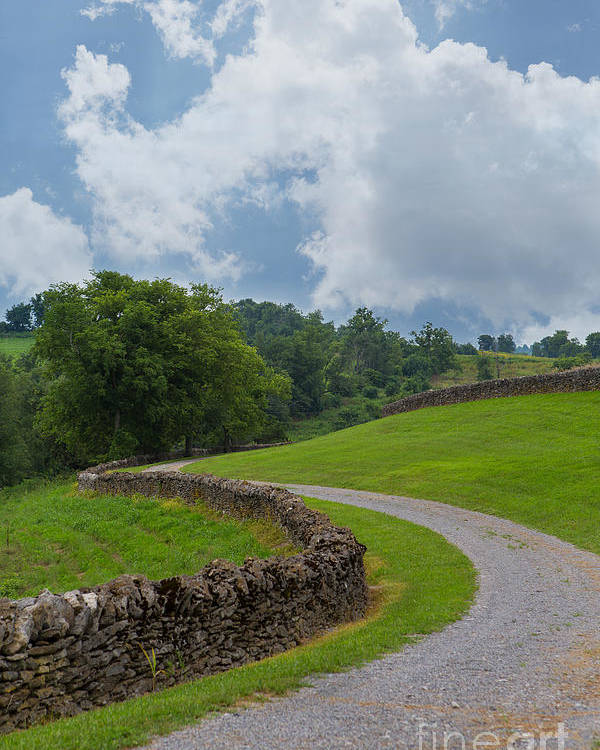 Kentucky Poster featuring the photograph Country Road With Limestone Fence by Kay Pickens