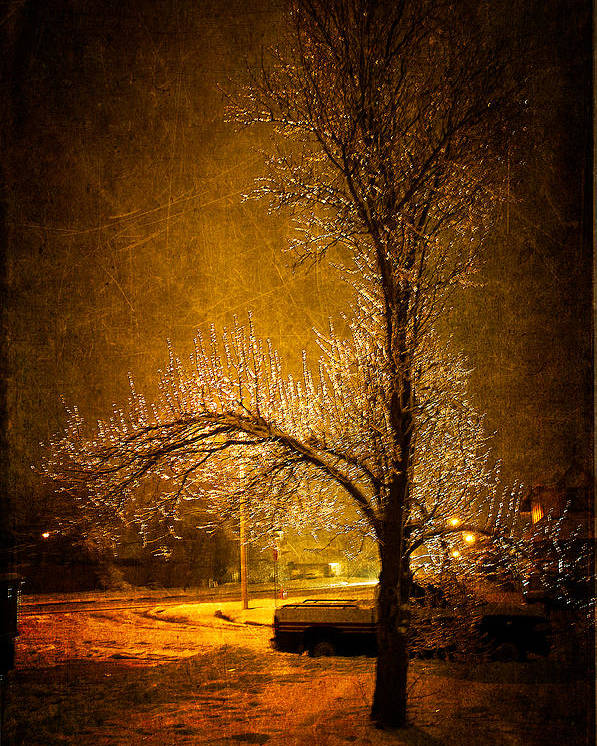 Winter Poster featuring the photograph Dark Icy Night by Sofia Walker