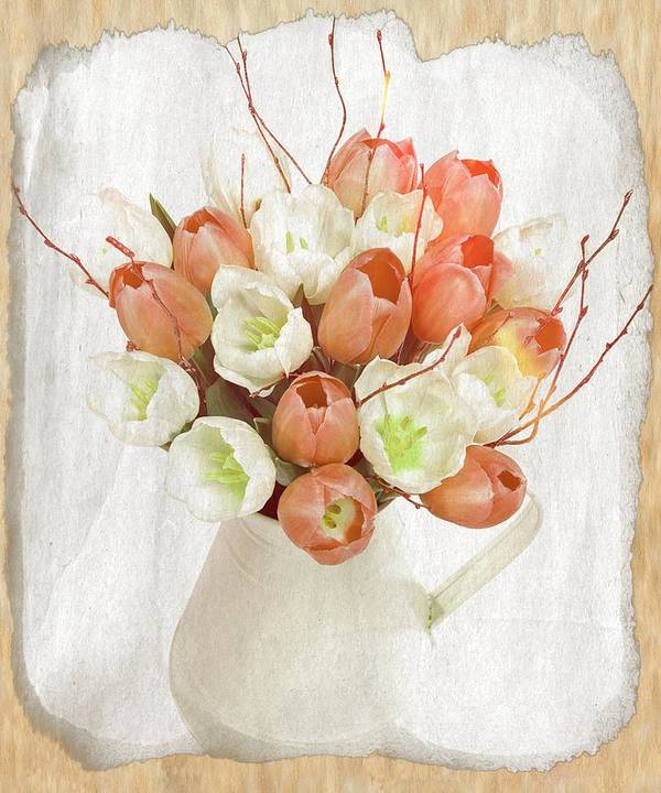White Tulips Poster featuring the photograph Deluxe Peach Tulips by Debra Miller
