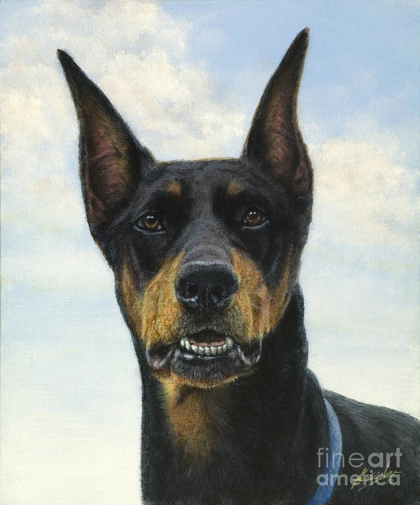 Dog Paintings Poster featuring the painting Doberman by John Silver