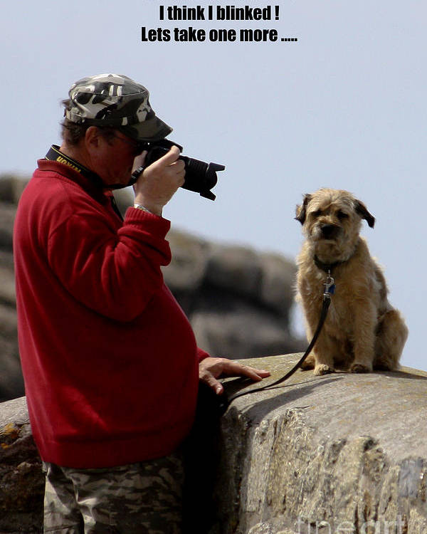 Photographer Poster featuring the photograph Dog Being Photographed by Terri Waters