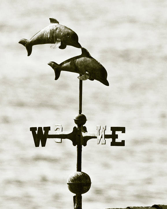 Dolphins Poster featuring the photograph Dolphins Weathervane In Sepia by Ben and Raisa Gertsberg