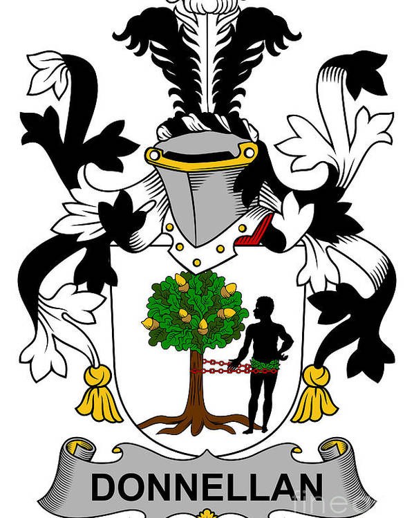 Donnellan Poster featuring the digital art Donnellan Coat Of Arms Irish by Heraldry