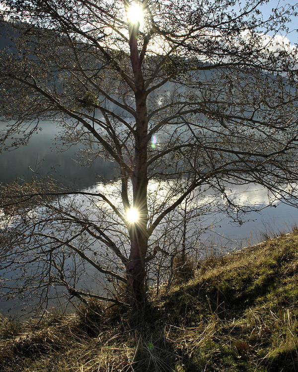 Landscape Poster featuring the photograph Double Sun by Randal Bruck