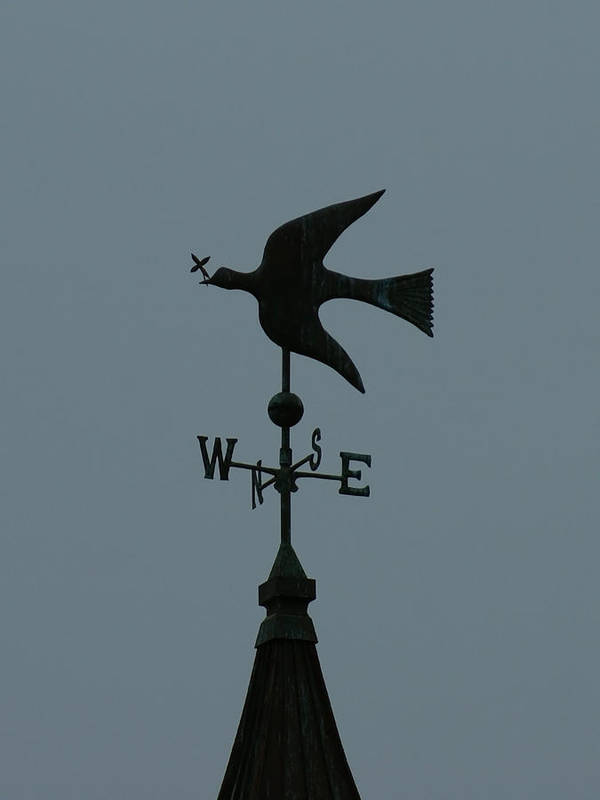 Dove Weathervane Poster featuring the photograph Dove Weathervane by Ernie Echols