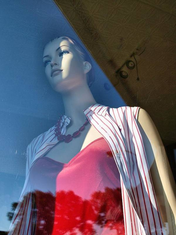 Mannequin Poster featuring the photograph Dream Away by Tom Druin