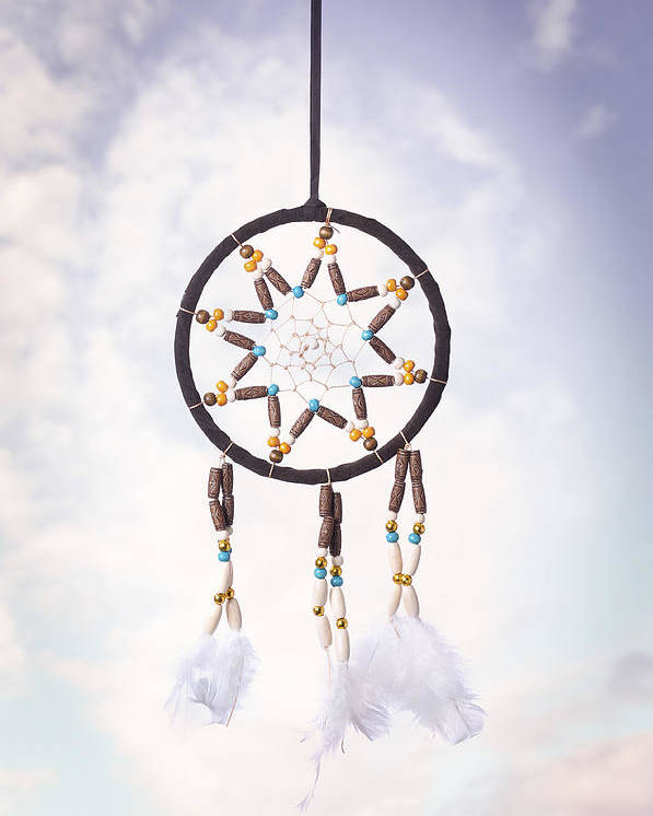 Dream Poster featuring the photograph Dream Catcher by Amanda Elwell