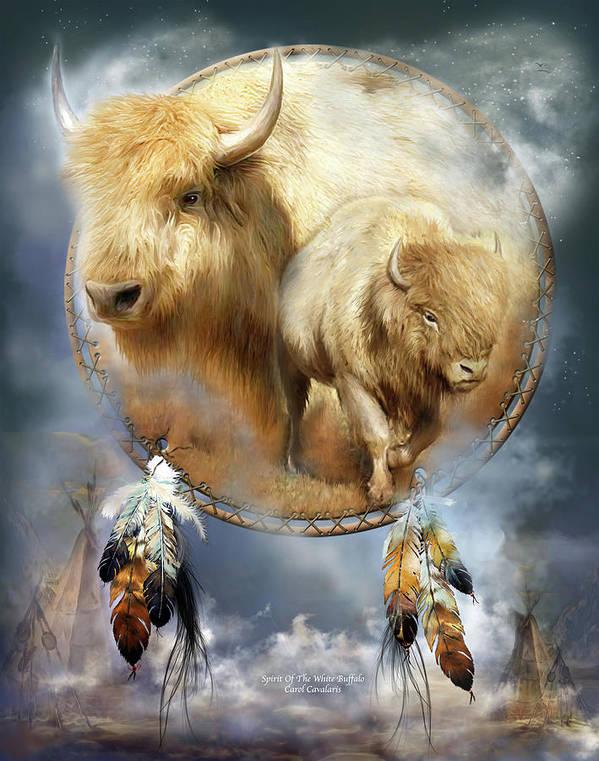 Carol Cavalaris Poster featuring the mixed media Dream Catcher - Spirit Of The White Buffalo by Carol Cavalaris