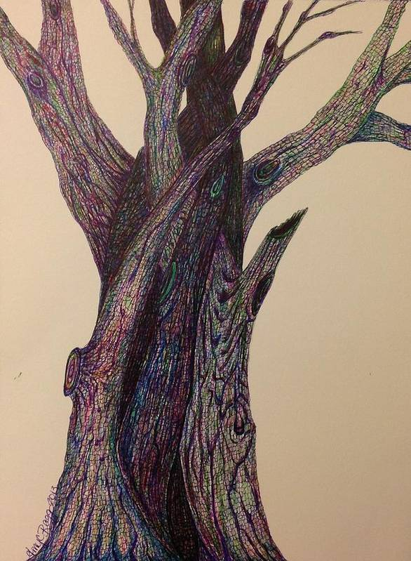 Twisted Trees Poster featuring the drawing Entangled by Amy Ragg