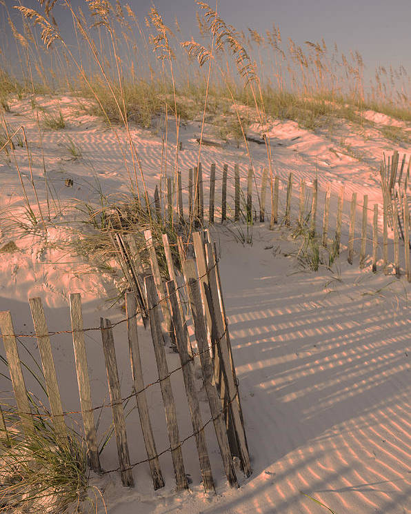 Orange Beach Poster featuring the photograph Evening At The Beach by Maria Suhr