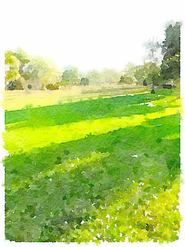 Waterlogue Poster featuring the digital art Evening Shadows by Shannon Grissom