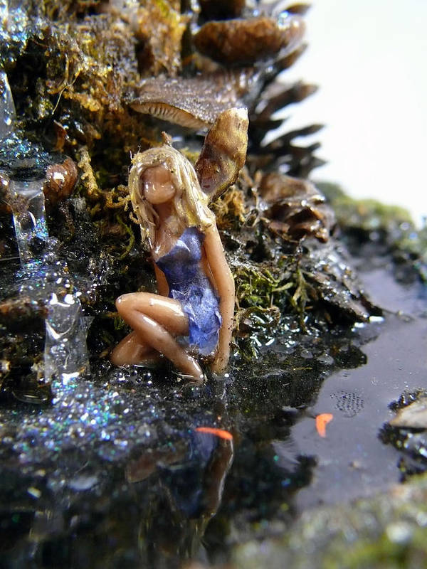 Poster featuring the mixed media Faerie Reflection by Debra LaPointe