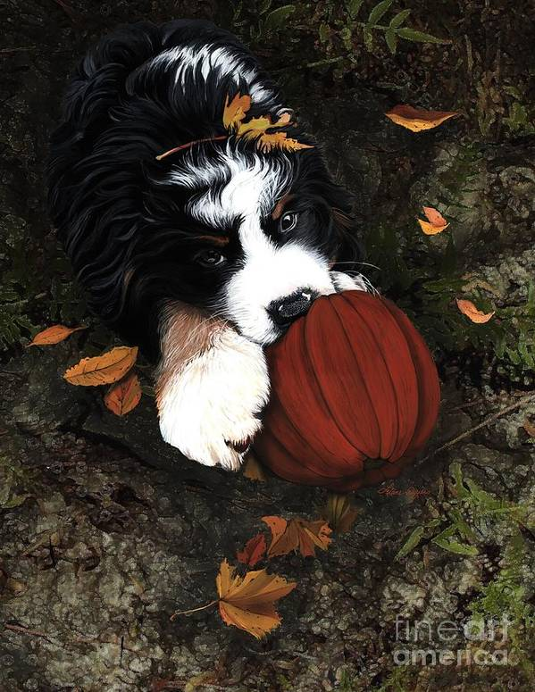 Bernese Mountain Dog Poster featuring the painting Fall 4 U by Liane Weyers