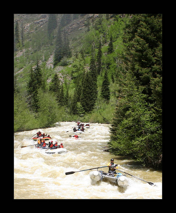Action On The Animas Poster featuring the photograph White Water Rafting On The Animas by Jack Pumphrey