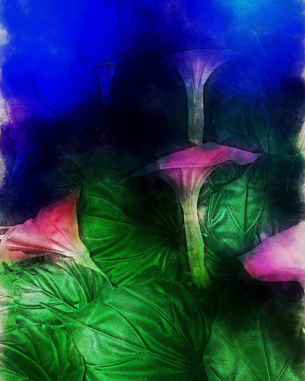 Asia Poster featuring the digital art Fantasy Flowers Traveling Pigments Hp by David Lange