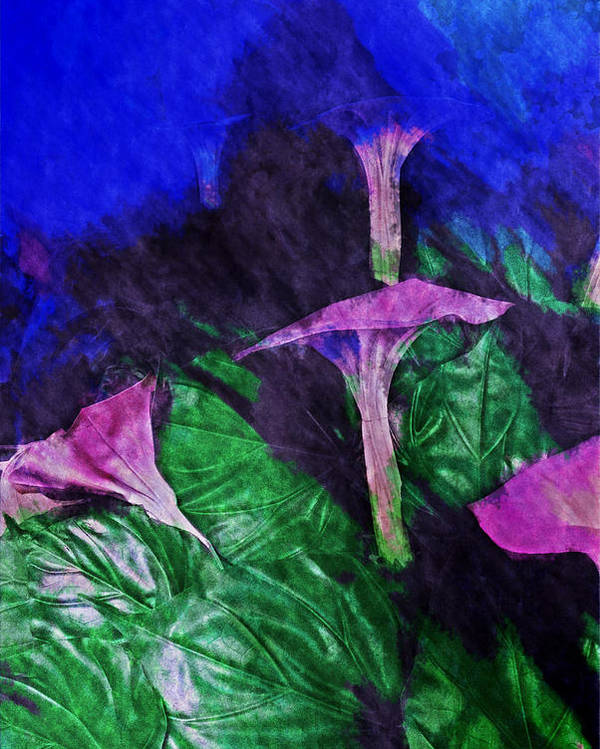 Asia Poster featuring the digital art Fantasy Flowers Watercolor 2 Hp by David Lange