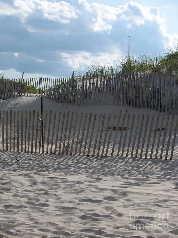 Fence Poster featuring the photograph Fenced Dune by Christiane Schulze Art And Photography