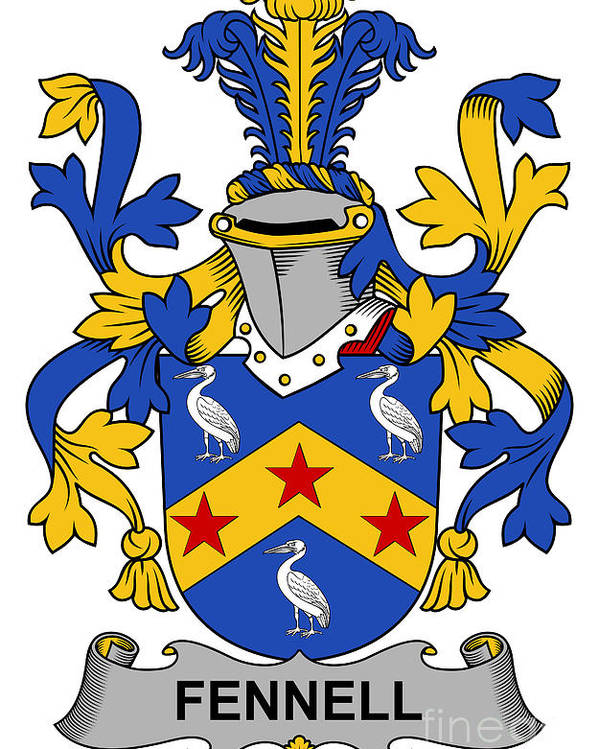Fennell Poster featuring the digital art Fennell Coat Of Arms Irish by Heraldry