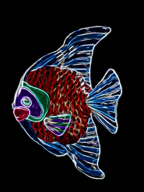 Fish Poster featuring the photograph Fish Tales by Shane Bechler