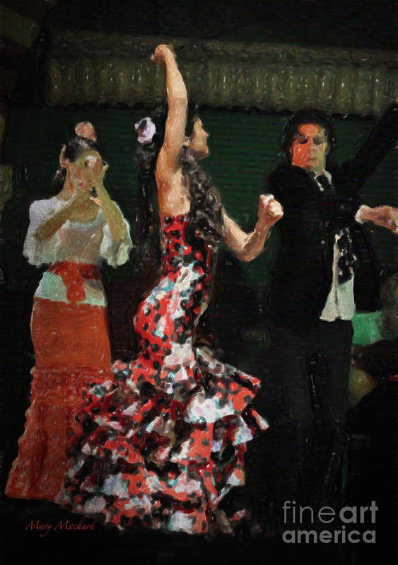Flamenco Series #13 Poster featuring the photograph Flamenco Series No 13 by Mary Machare
