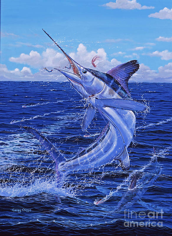 White Marlin Poster featuring the painting Flat Line Off0077 by Carey Chen