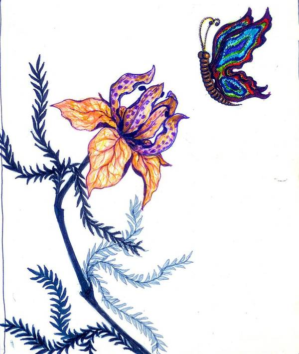 Flower Poster featuring the drawing Flower And Butterfly by Rae Chichilnitsky
