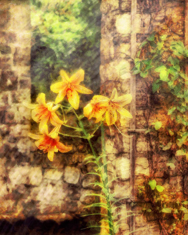 Yellow Poster featuring the photograph Flower - Lily - Yellow Lily by Mike Savad