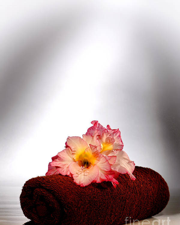 Gladiolus Poster featuring the photograph Flowers On Towel by Olivier Le Queinec
