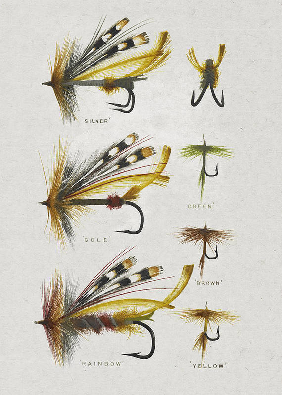 Fly Fishing Poster featuring the digital art Fly Fishing Flies by Aged Pixel