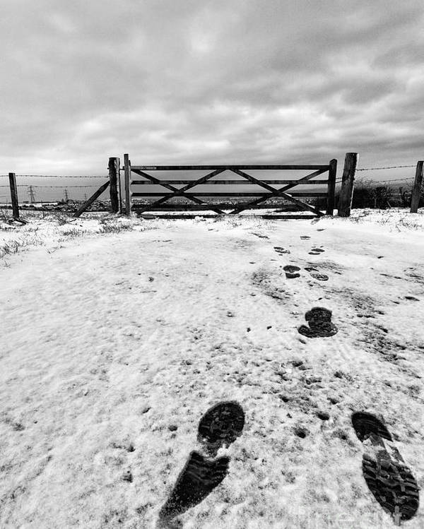 Black And White. Mono. Monochromatic Poster featuring the photograph Footprints In The Snow by John Farnan