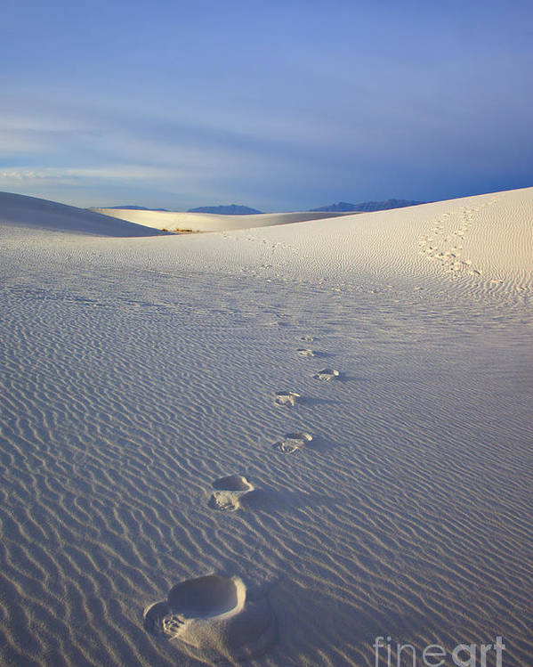 White Sands Poster featuring the photograph Footprints by Mike Dawson