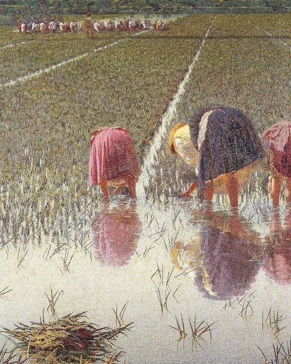 Painting; 19th Century Painting; Europe; Italy; Morbelli Angelo; Farm Work; Paddy Field; Rice Weeder; Realism Poster featuring the painting For Eighty Pennies by Angelo Morbelli