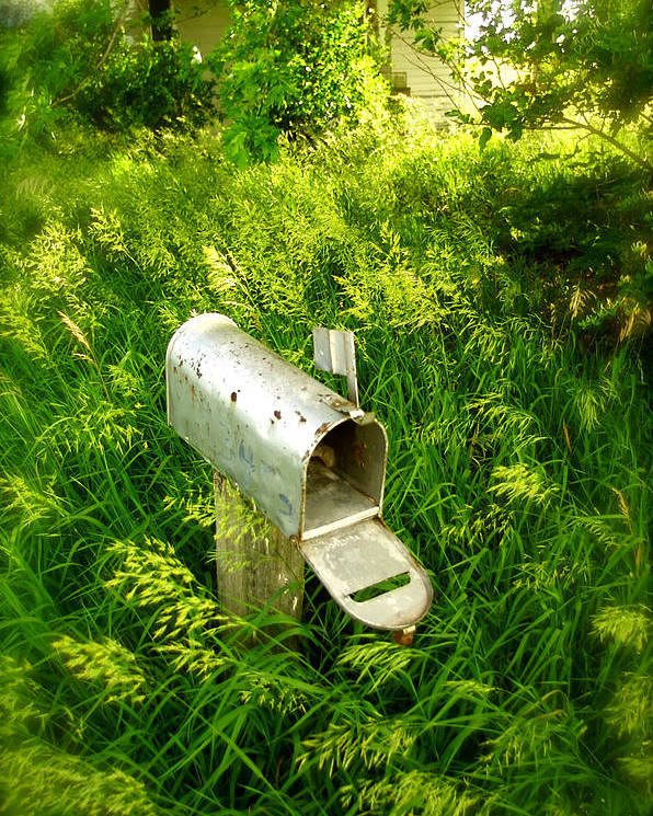 Photography Poster featuring the photograph Forgotten Mail 0628 by Timothy Bischoff