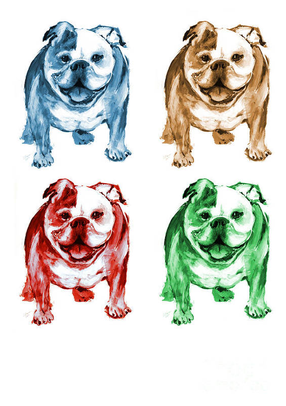 Bulldogs Poster featuring the painting Four Bulldogs by Barbara Marcus