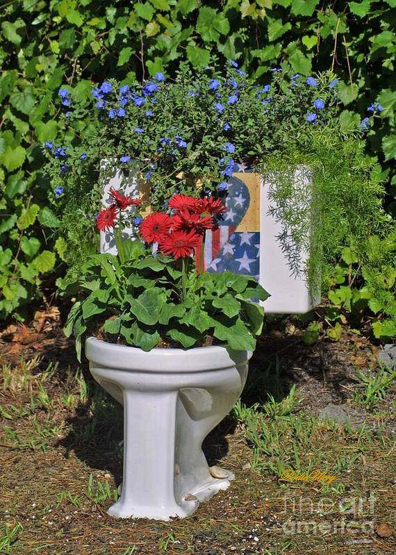Loo Garden Poster featuring the photograph Fourth Of July Loo by Dodie Ulery