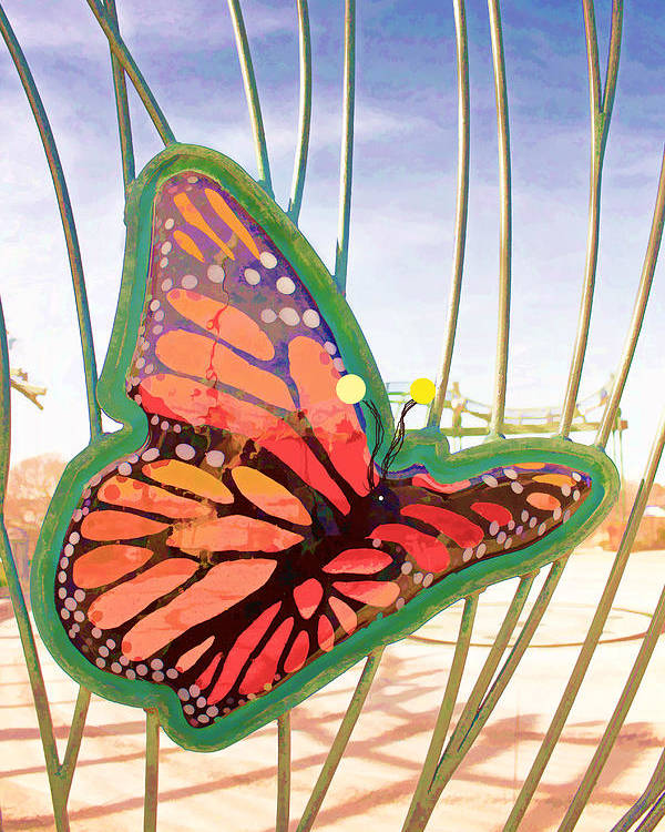 Butterfly Poster featuring the photograph Free Butterfly Fly by Daniel Benatar