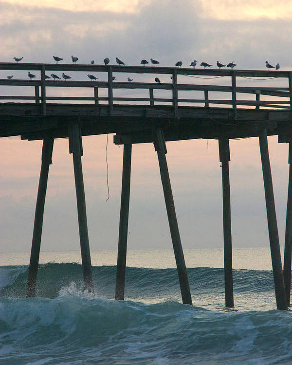 : Crystal Pier Photographs Poster featuring the photograph Friends Waiting For Sunrise by Phil Mancuso