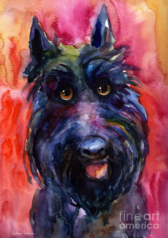 Scottish Terrier Poster featuring the painting Funny Curious Scottish Terrier Dog Portrait by Svetlana Novikova