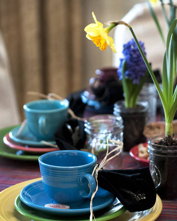 Tea Party Poster featuring the photograph Garden Party by Samantha Schram