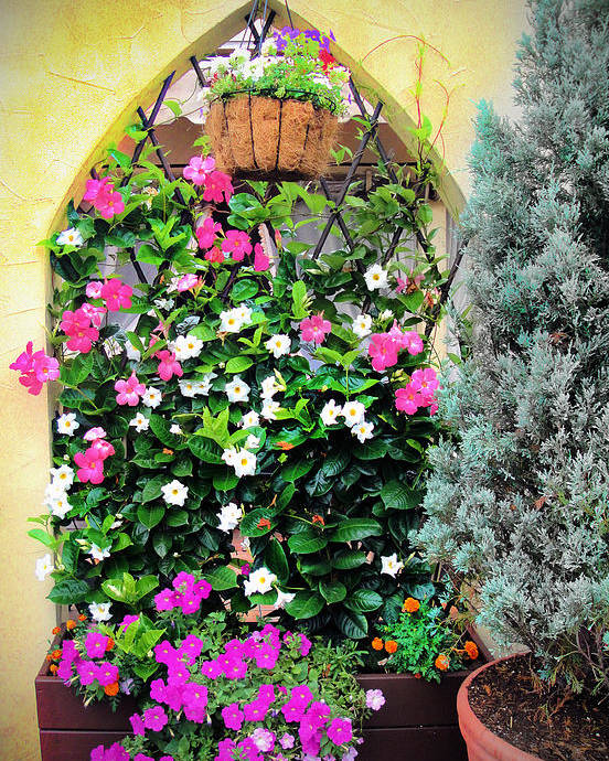 Flowers Poster featuring the photograph Garden Screen With Flowers by Alla Albert